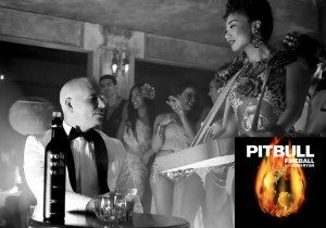 20140923_pitbull_fireball 7